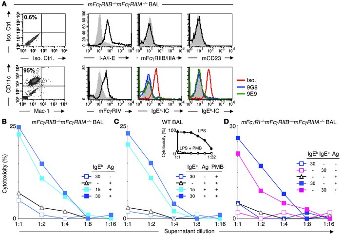 mFcγRIV engagement by IgE ICs induces TNF-α secretion by BAL macrophages...