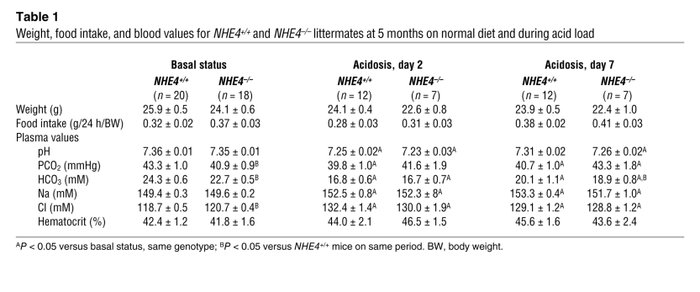 Weight, food intake, and blood values for NHE4+/+ and NHE4–/– littermate...
