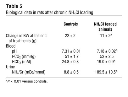 Biological data in rats after chronic NH4Cl loading