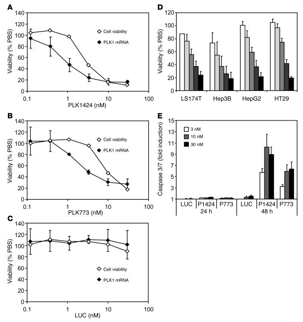 Activity of PLK1 siRNAs in vitro. Correlation between mRNA silencing and...