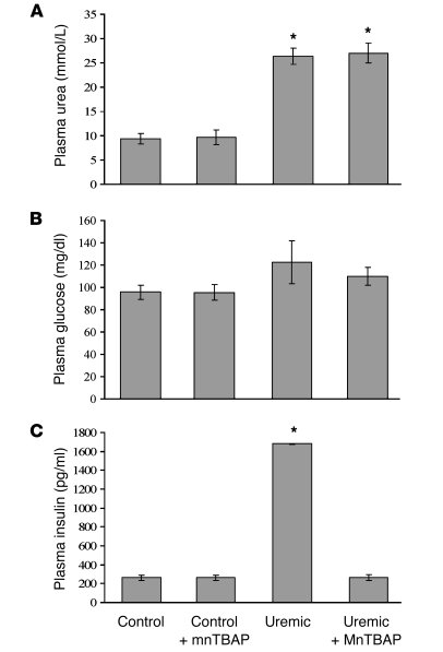 Treatment of uremic mice with a SOD/catalase mimetic normalizes hyperins...