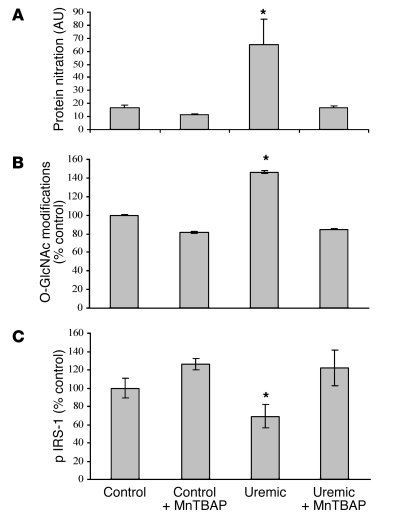 Treatment of uremic mice with a SOD/catalase mimetic normalizes oxidativ...