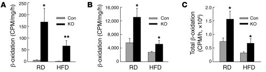 Levels of fatty acid β-oxidation are increased in Atg7-knockout mice. (A...