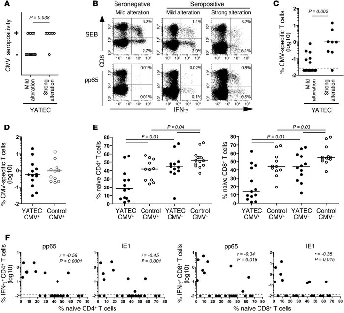 Association between CMV-specific T cell responses and marked T cell alte...