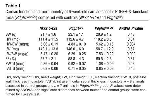 Cardiac function and morphometry of 6-week-old cardiac-specific PDGFR-β–...