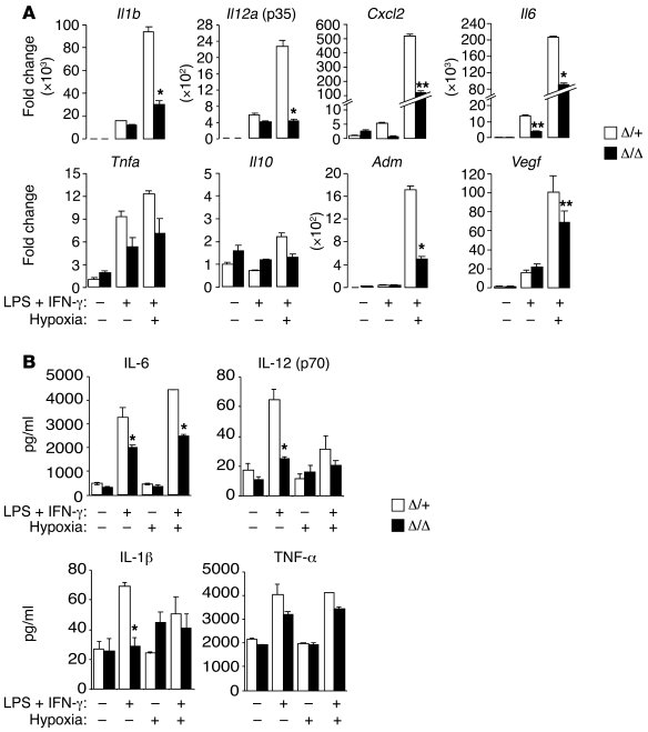 Proinflammatory cytokine expression is aberrant in Hif2aΔ/Δ BMDMs respon...