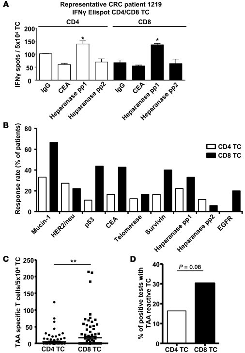 CD4+ and CD8+ T cell responses against TAAs in CRC patients.     (A) Pri...