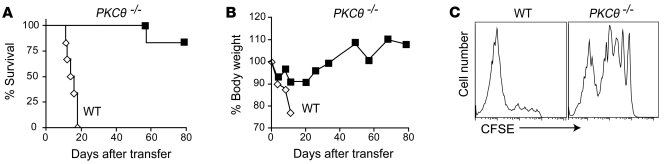 PKCθ plays a critical role in CD8 T cell–induced GVHD. 1 × 106 MACS-puri...