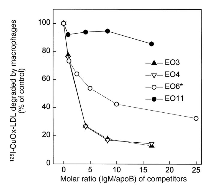 Degradation of 2 μg (4 μg/ml) of 125I-CuOx-LDL by elicited mouse periton...