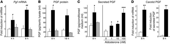 PGF expression is regulated by aldosterone via vascular MR activation. M...