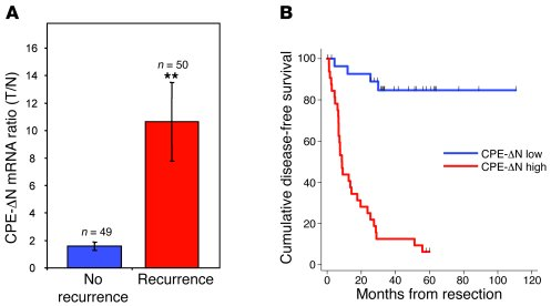 Elevated CPE-ΔN mRNA expression in HCC tumors correlates with poor progn...