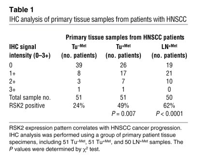 IHC analysis of primary tissue samples from patients with HNSCC
