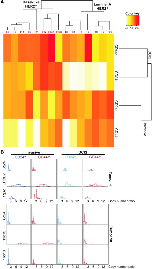 Diversity for different chromosomal probes in breast tumor subtypes and ...