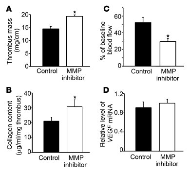 The effects of an MMP inhibitor on thrombus resolution. WT mice were i.p...