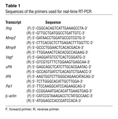 Sequences of the primers used for real-time RT-PCR