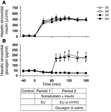 Hepatic sinusoidal concentrations of pancreatic hormones in 18-hour fast...
