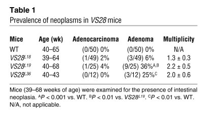 Prevalence of neoplasms in VS28 mice