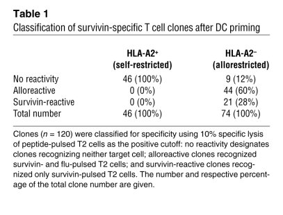 Classification of survivin-specific T cell clones after DC priming