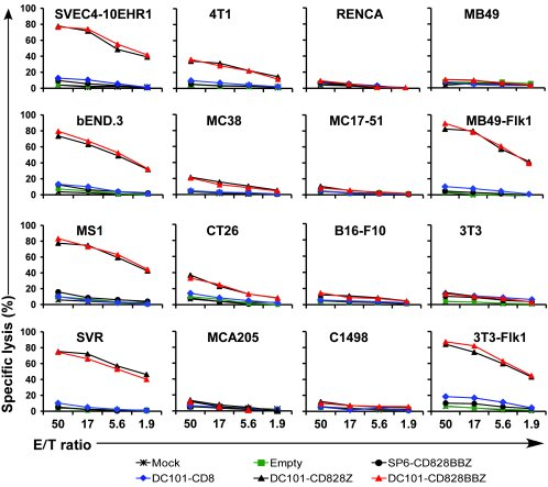 Primary mouse T cells modified to express VEGFR-2 CAR specifically lyse ...