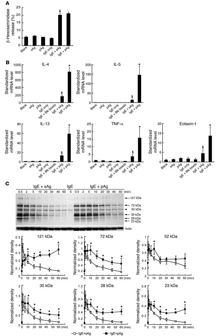 Differential cytokine and chemokine responses of BMMCs after exposure to...