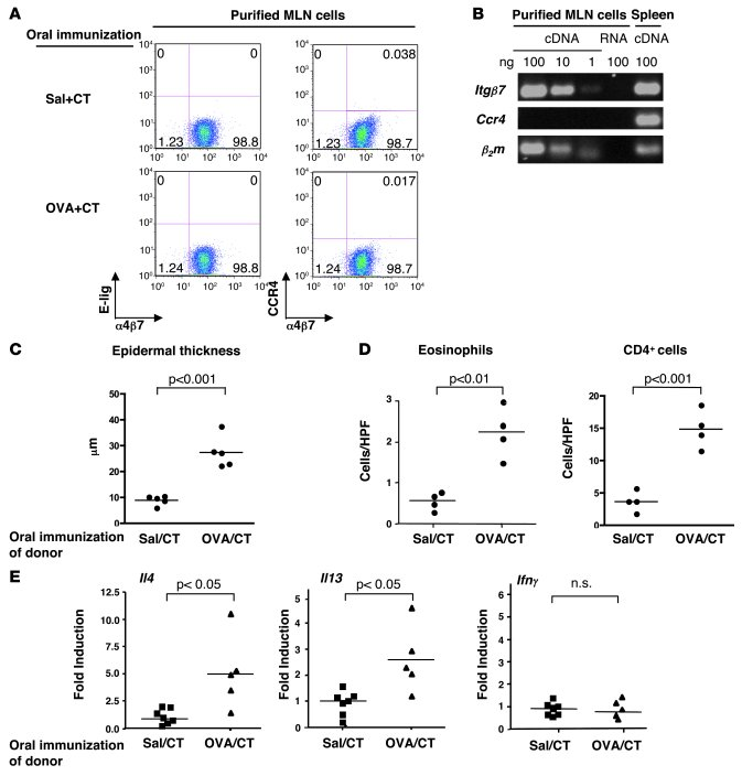 Adoptive transfer of allergic skin inflammation by CD4+α4β7+ T cells fro...