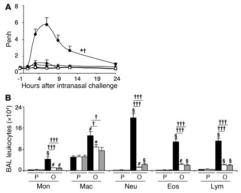 Influence of IFN-γ or IFN-γR1 on the development of airway responses and...