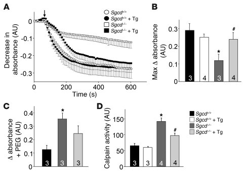 SERCA1 overexpression protects against Ca2+-induced disease indexes in s...