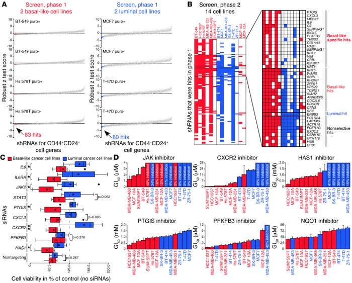 Identification and validation of genes required in basal-like breast can...