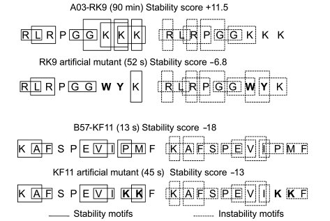 Identification of stability and instability motifs in HIV sequences and ...