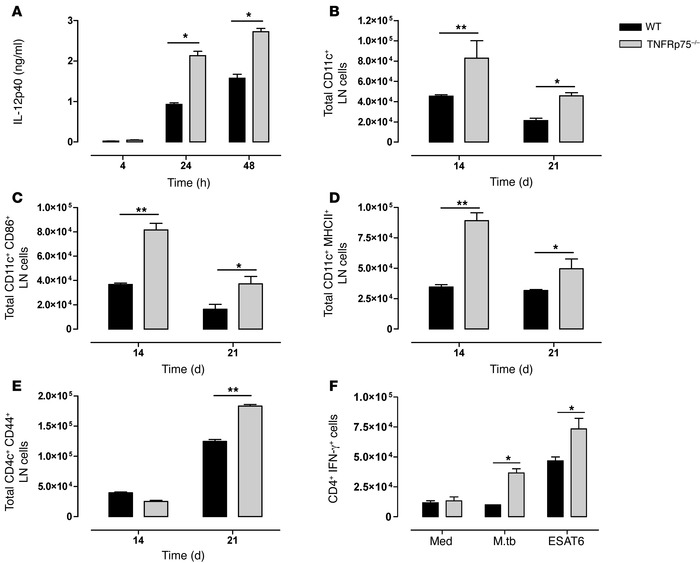 Increased activated DCs induces enhanced M. tuberculosis–specific IFN-γ ...