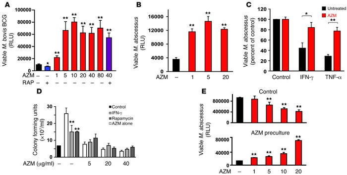 Azithromycin blocks intracellular killing of mycobacteria. (A and B) Hum...