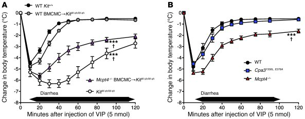 Mast cells and MCPT4 can diminish VIP-induced hypothermia and diarrhea i...
