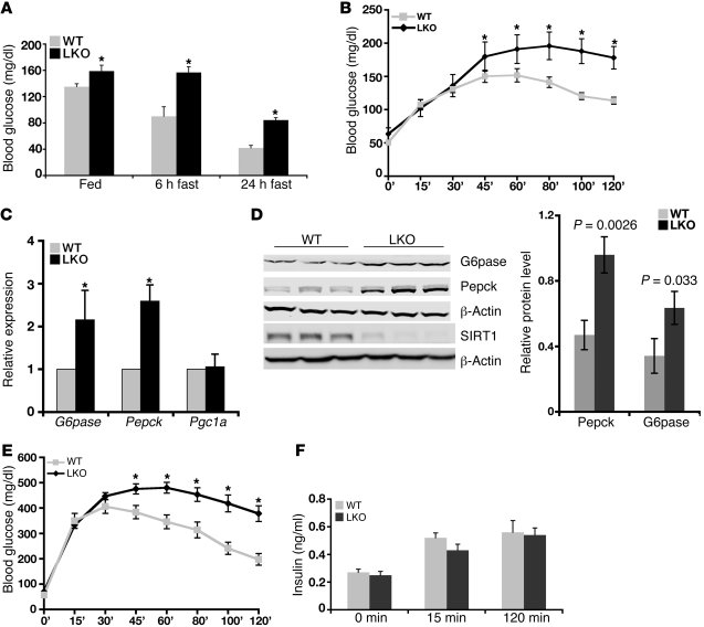 Liver-specific deletion of SIRT1 causes increased hepatic glucose produc...