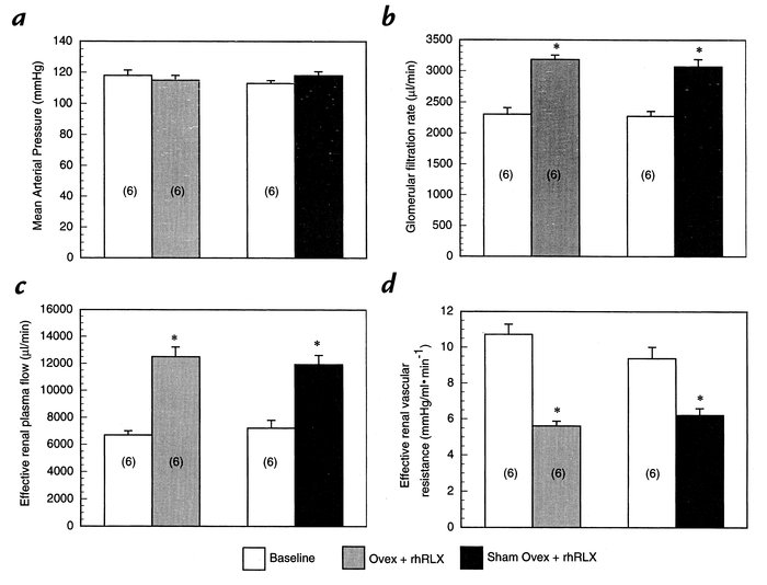 Effect of 5-day administration of rhRLX to sham-ovariectomized and ovari...
