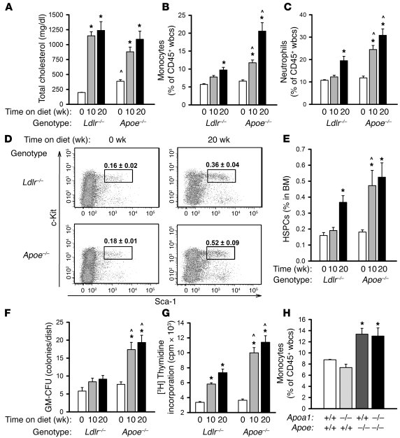 Feeding Ldlr–/– and Apoe–/– mice a WTD induces leukocytosis, expansion o...