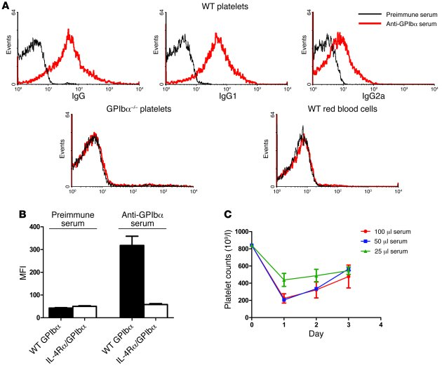Anti-GPIbα antibodies were generated in GPIbα–/– mice after WT platelet ...