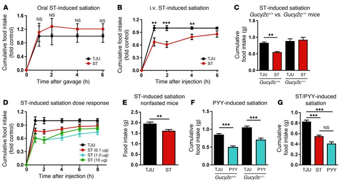 Systemic administration of GUCY2C ligand induces satiation. (A) Cumulati...