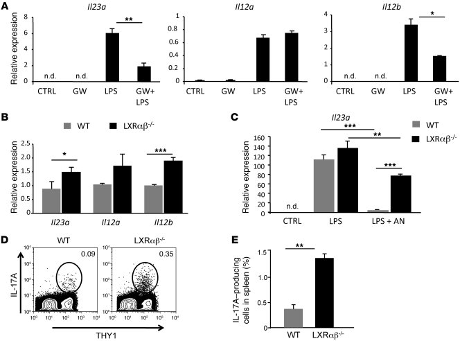 LXR signaling regulates the IL-23/IL-17 granulopoietic signaling axis. (...