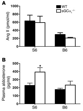 Activity of the RAAS is increased in sGCα1–/– mice on the S6 background....