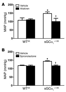 RAAS inhibition normalizes blood pressure in sGCα1–/–S6 mice.   (A) MAP,...