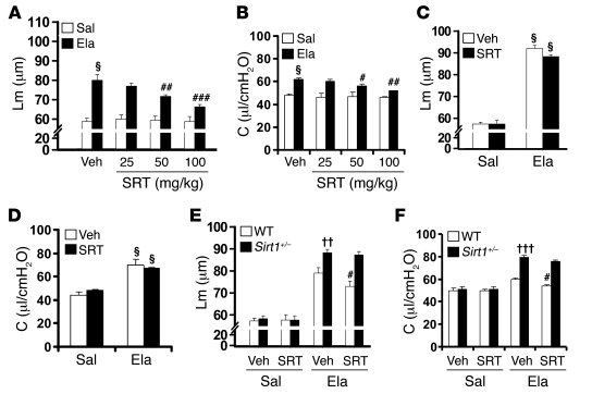 SRT1720 exhibits protective and therapeutic effects on elastase-induced ...
