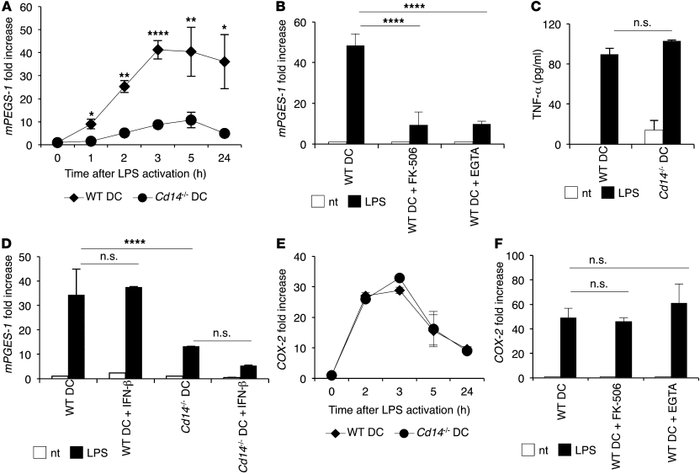 CD14-dependent NFAT activation induced by LPS in DCs regulates mPGES-1 e...