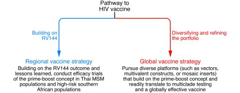 A framework for HIV vaccine development. Two parallel pathways in an HIV...