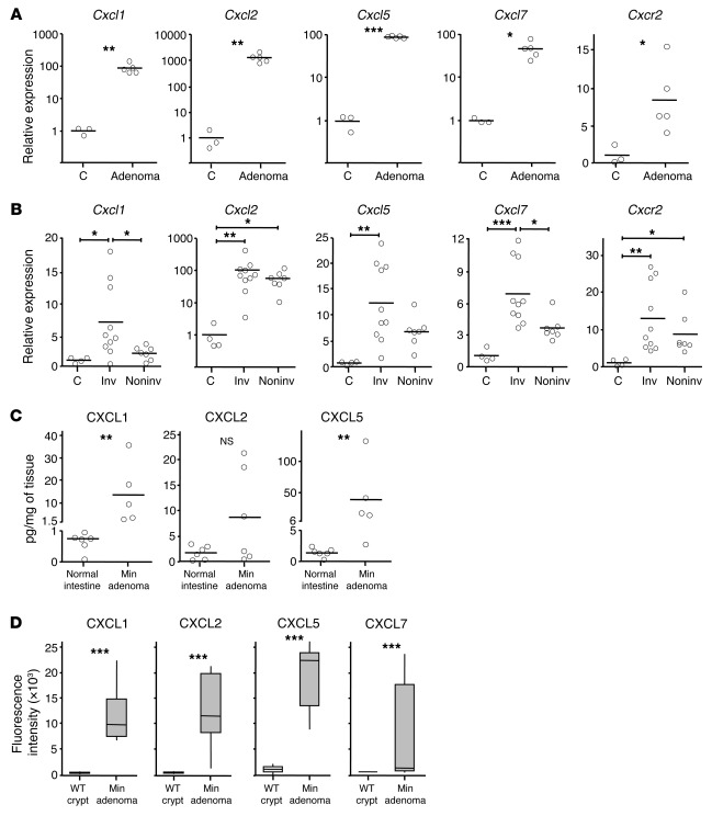 Genes encoding CXCR2 ligands are highly expressed by spontaneous intesti...