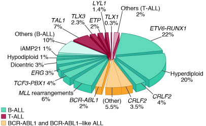 Frequency of cytogenetic subtypes of pediatric ALL. The pie chart includ...
