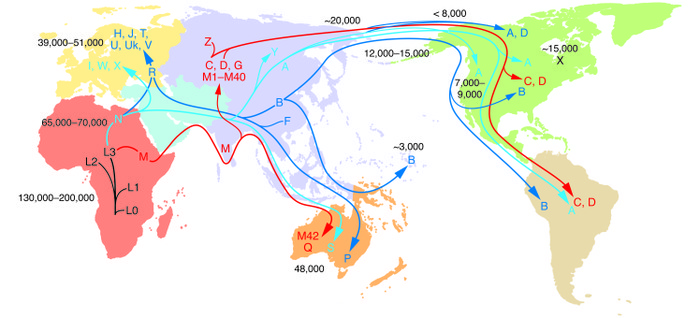 Radiation of human mtDNA as women migrated out of Africa to colonize Eur...
