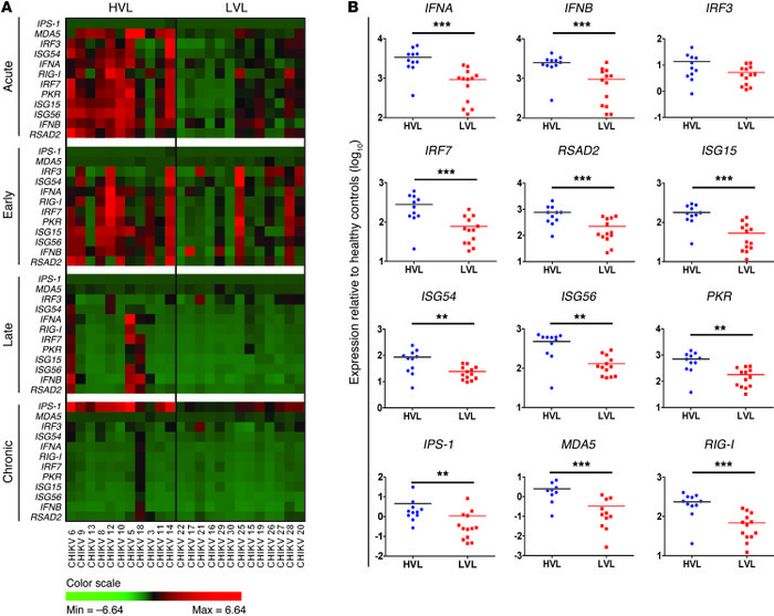 Expression profiles of type I IFNs and related ISGs in CHIKV-infected pa...