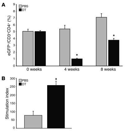 Effective depletion of transgenic Treg cells is achieved in chimeric DER...