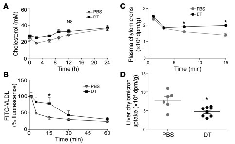 VLDL/CMR lipoprotein catabolism is impaired in Treg-depleted mice. (A) B...