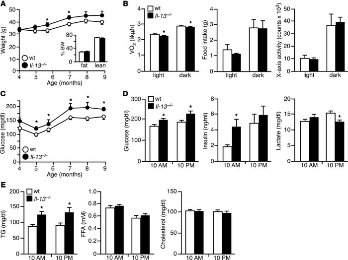 Il-13–/– mice show increased body weight and blood glucose levels.   (A...